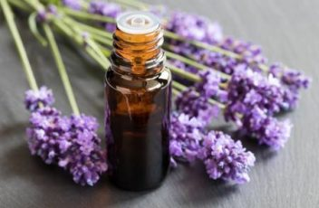 80617963-a-bottle-of-lavender-essential-oil-with-fresh-lavender-twigs-on-a-dark-background